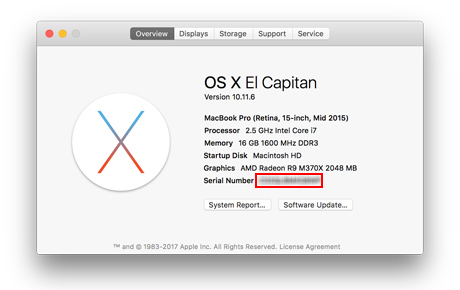 Locate Apple serial in System Profiler